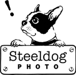 steeldog photo